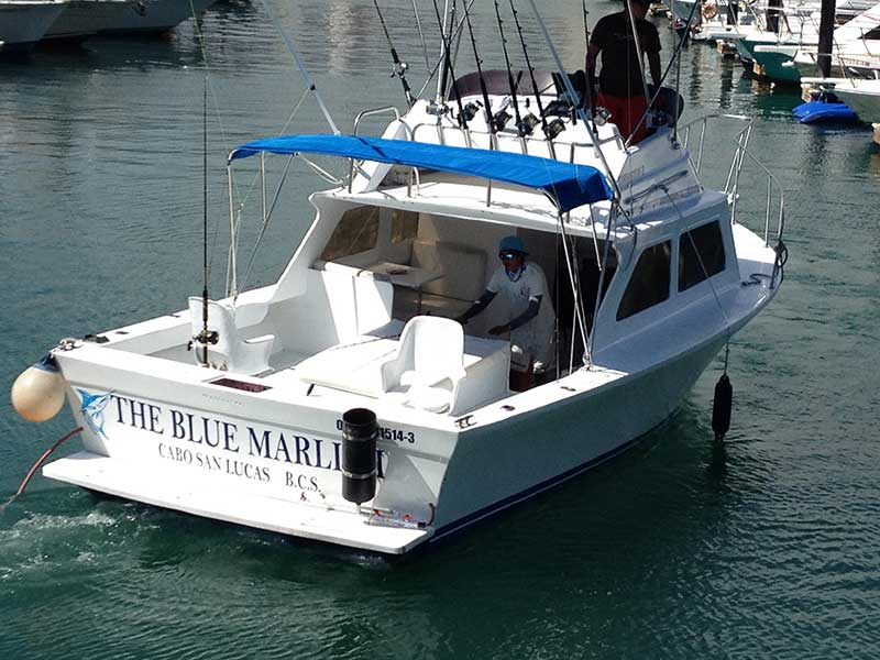 The-Blue-Marlin-I-1.CSL2